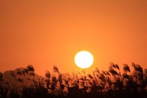 1127夕陽02